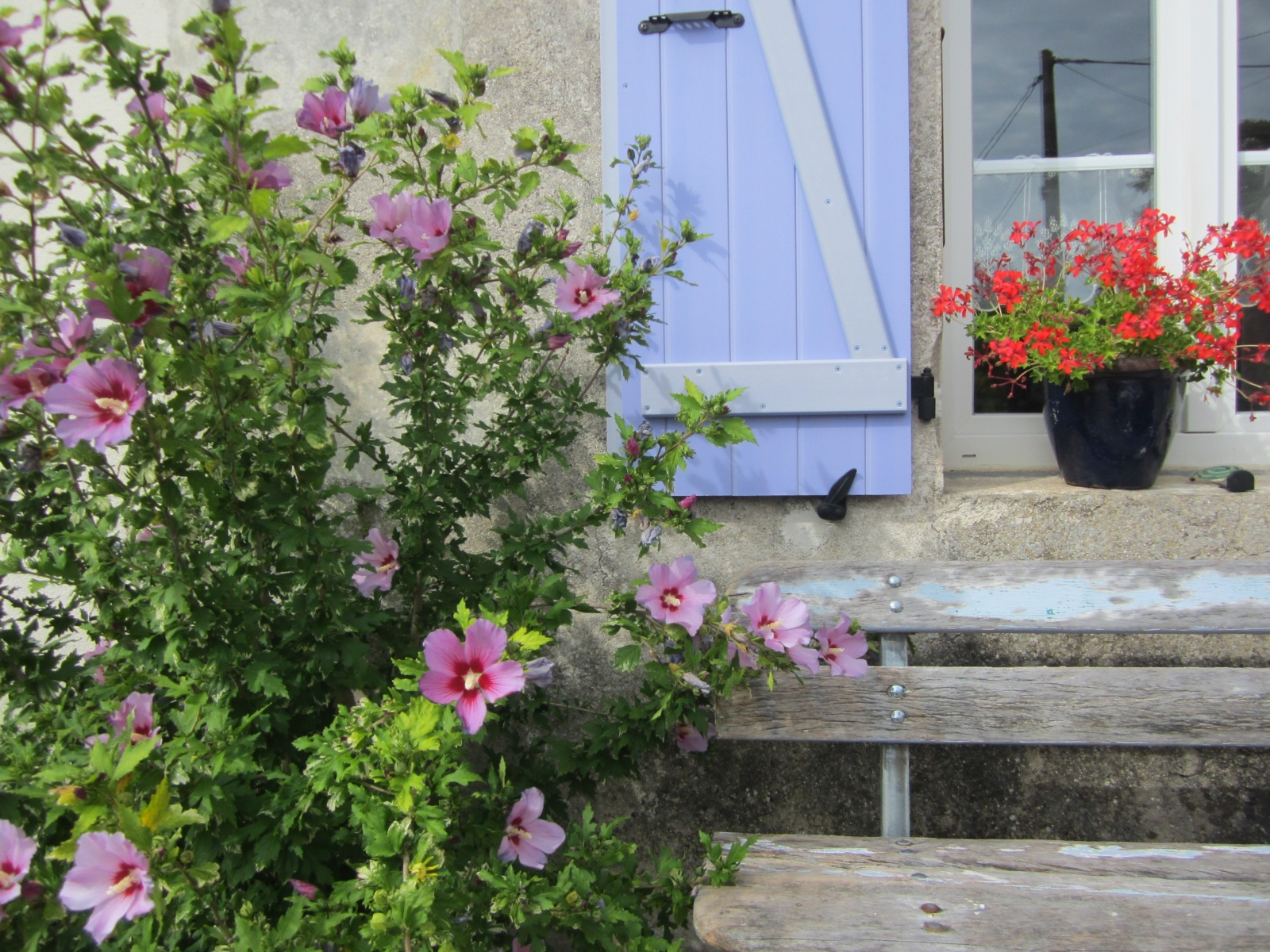 Vakantiewoning 2-6 personen Le Petit Chenac Charente Maritme