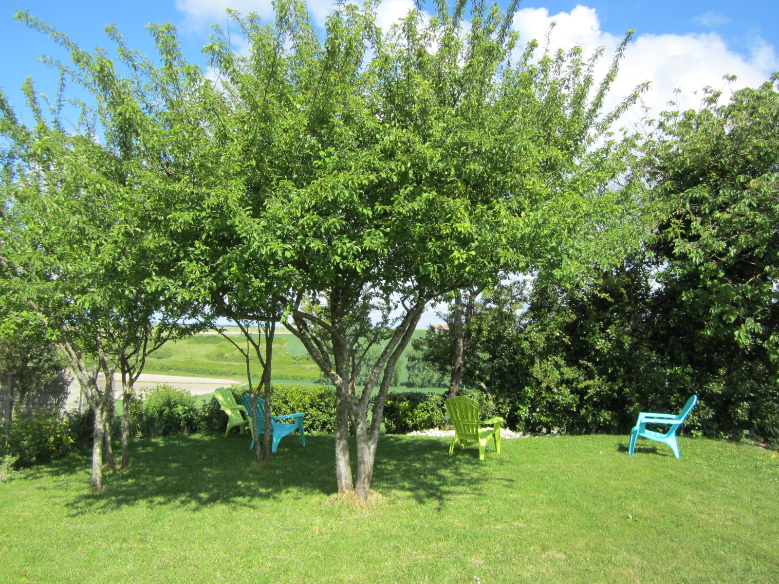 Relaxen onder de bomen met uitzicht rivier de Gironde Le Petit Chenac Gîtes