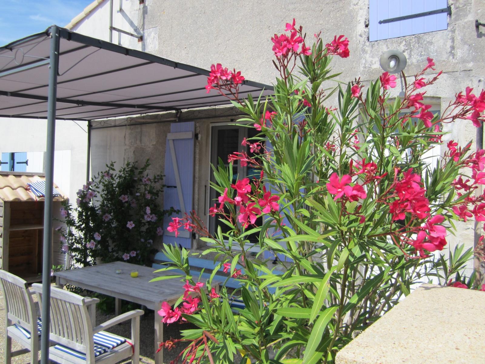 6 persoons gîte le Cordouan logeren bij Nederlanders in Le Petit Chenac