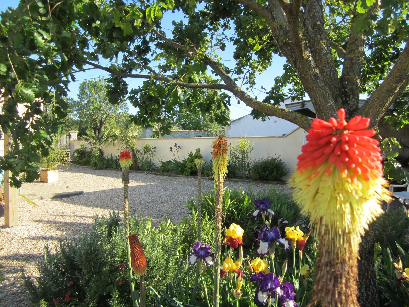 Bloemen le Petit Chenac Gites Charente Maritime